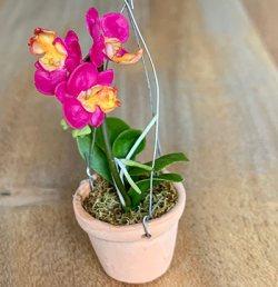 Künstliche Miniaturorchidee - Phalaenopsis - violâtre