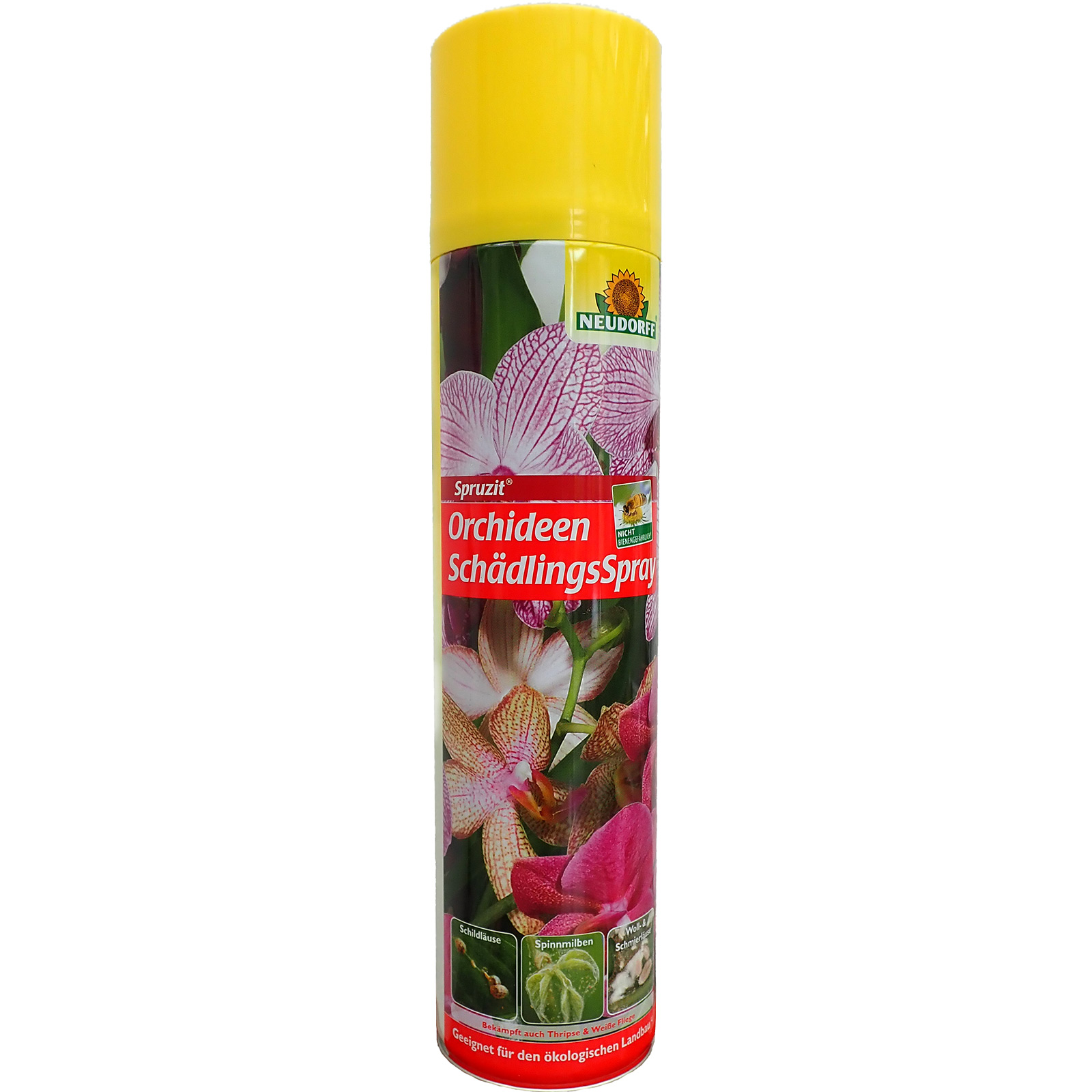 Orchid insect spray